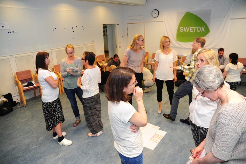 Swetox – forskare med gott samarbete